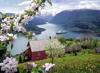 תמונה של פאזל 500 חלקים- נוף כפרי צפה לאגם