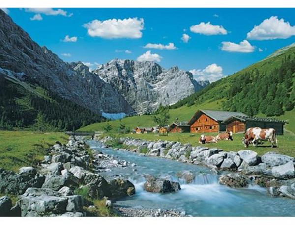תמונה של פאזל 1000 חלקים נוף אוסטרי