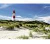 תמונה של פאזל 1000 חלקים מגדלור על החוף